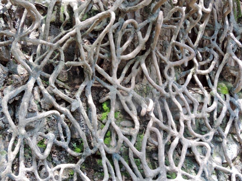 Le jardin de roche de Chandigarh, Inde image libre de droits