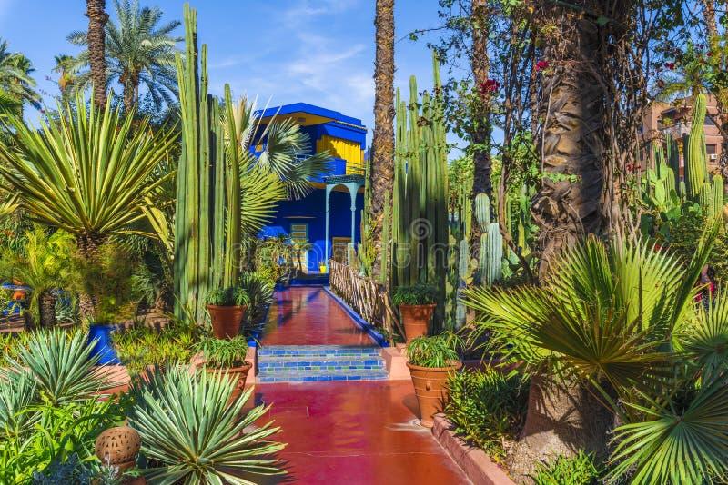 Le Jardin Majorelle, jardín tropical que sorprende en Marrakesh imagen de archivo libre de regalías