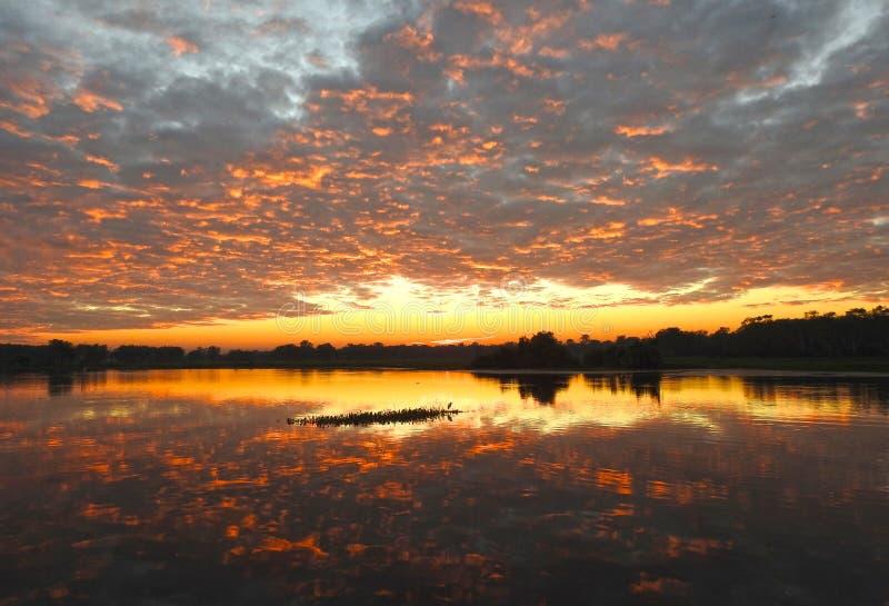 Le jaune arrose la lagune, parc national de Kakadu images stock