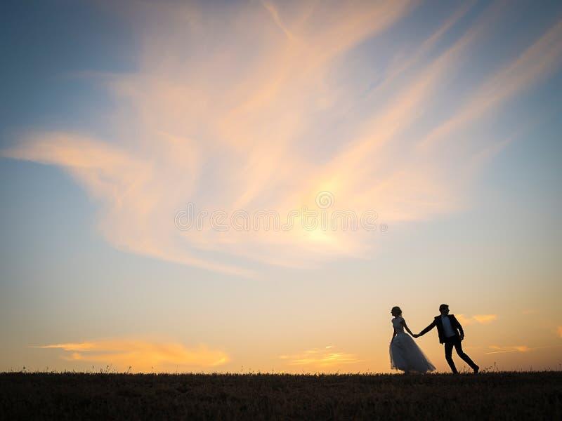 Le jeune couple de mariage va sur un champ photos libres de droits