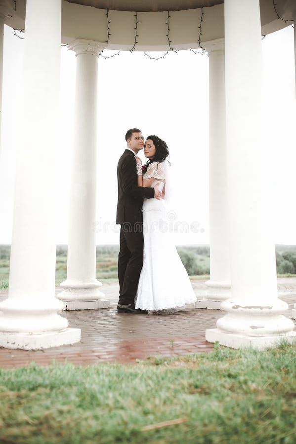 Le jeune couple heureux élégant de mariage se repose à l'herbe verte dessus photographie stock libre de droits