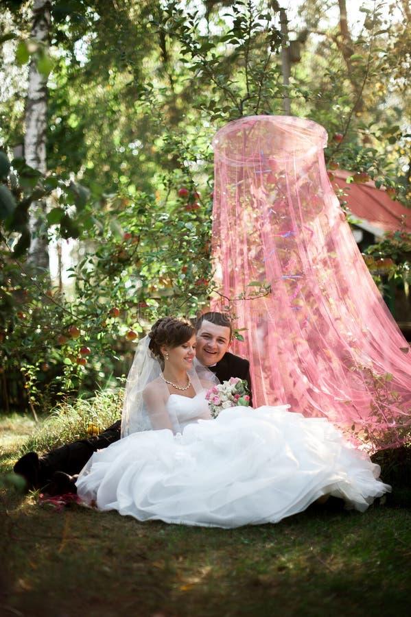 Le jeune couple heureux élégant de mariage se repose à l'herbe verte dessus images stock