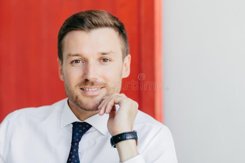 Le jeune entrepreneur masculin prospère s'est habillé dans la chemise blanche, regards franchement à l'appareil-photo, étant sûr  photo libre de droits