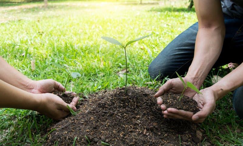 Le jeune homme avait l'habitude Siem pour creuser le sol pour planter des arbres dans son arri?re-cour au cours de la journ?e photo libre de droits