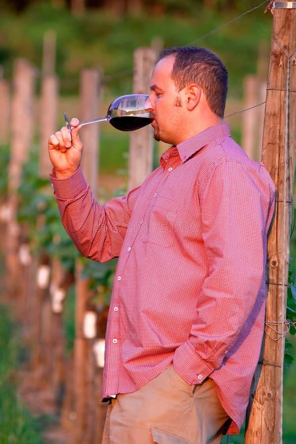 Le jeune homme goûte le vin rouge images stock