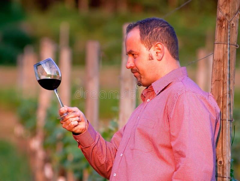 Le jeune homme goûte le vin rouge photographie stock
