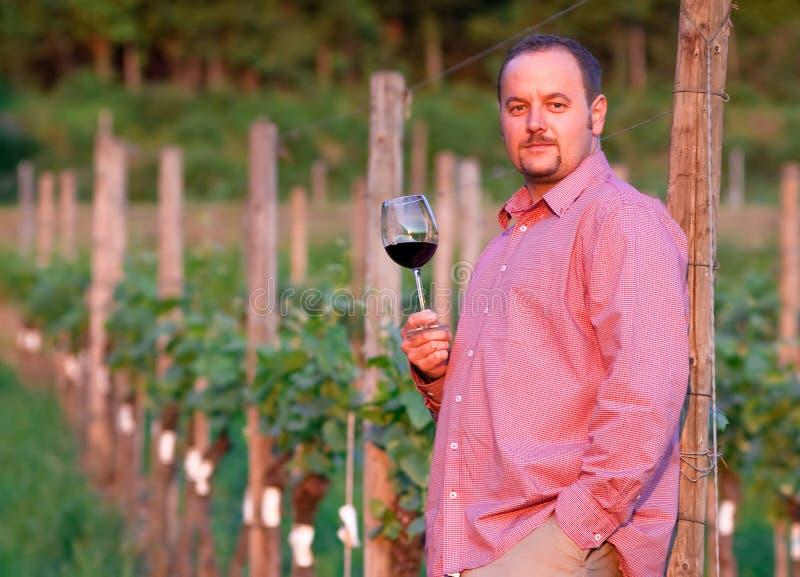 Le jeune homme goûte le vin rouge photo stock