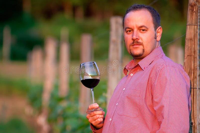 Le jeune homme goûte le vin rouge image stock
