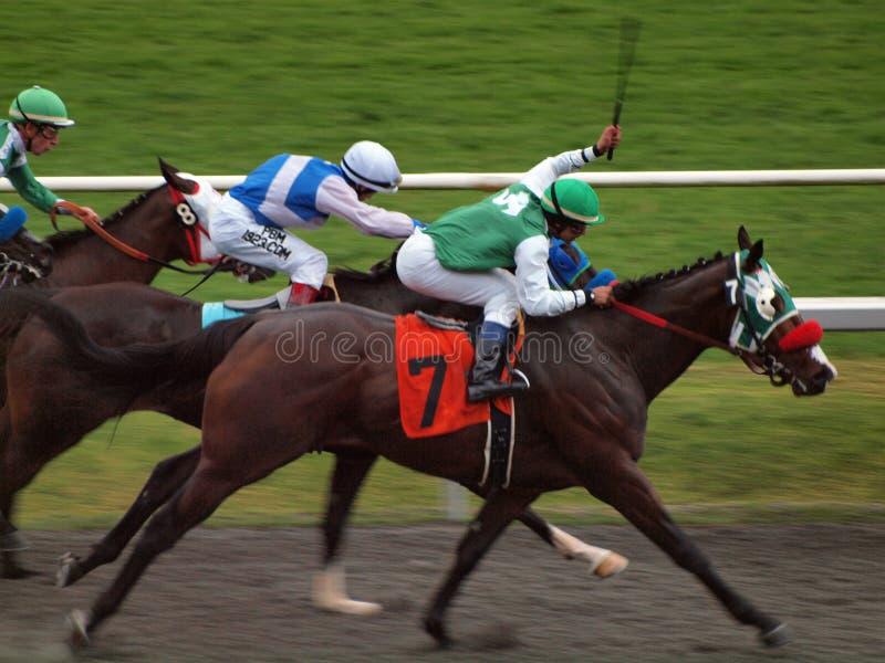 Le jockey étire le bras pour fouetter des chevaux photo libre de droits
