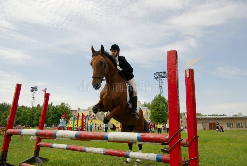 Le joli cheval de fille sautent photo stock