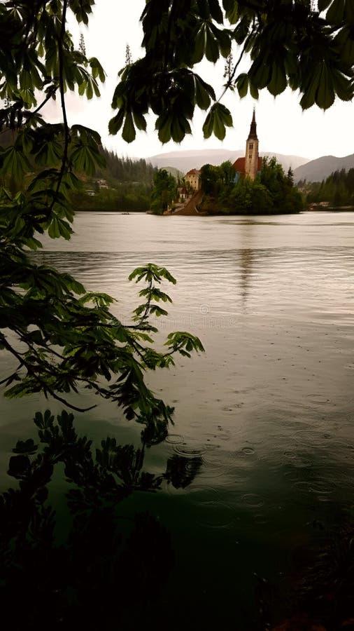 Le jour pluvieux au lac a saigné la Slovénie photos libres de droits