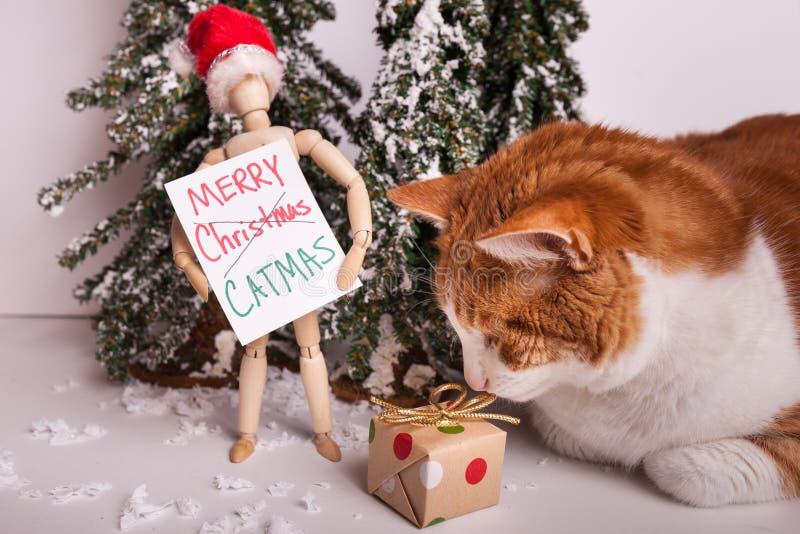 Le joyeux signe de CATMAS tenu par la poupée jointe en bois de mannequin portant sentir de chat de chapeau de Santa Claus a envel photographie stock libre de droits