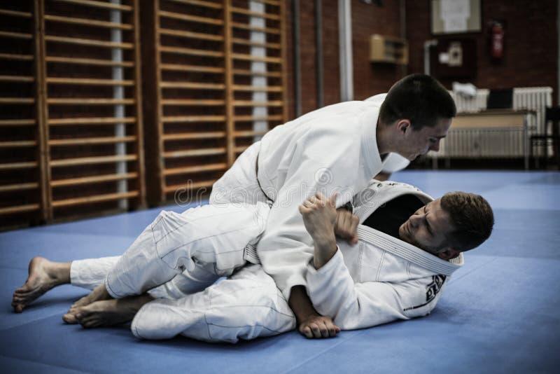 Le judo est sport fort image stock