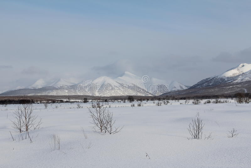 Le Kamtchatka, montagnes, toundra, région de Sobolewski photographie stock