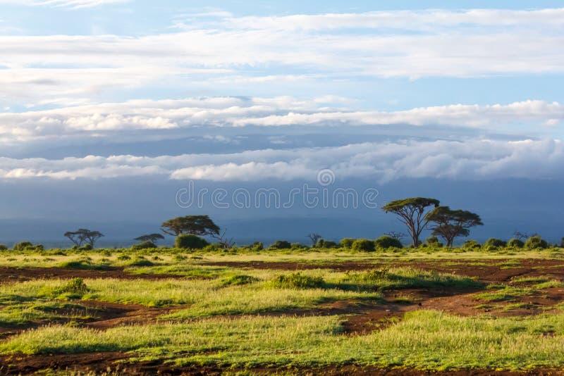 Le Kenya photo stock