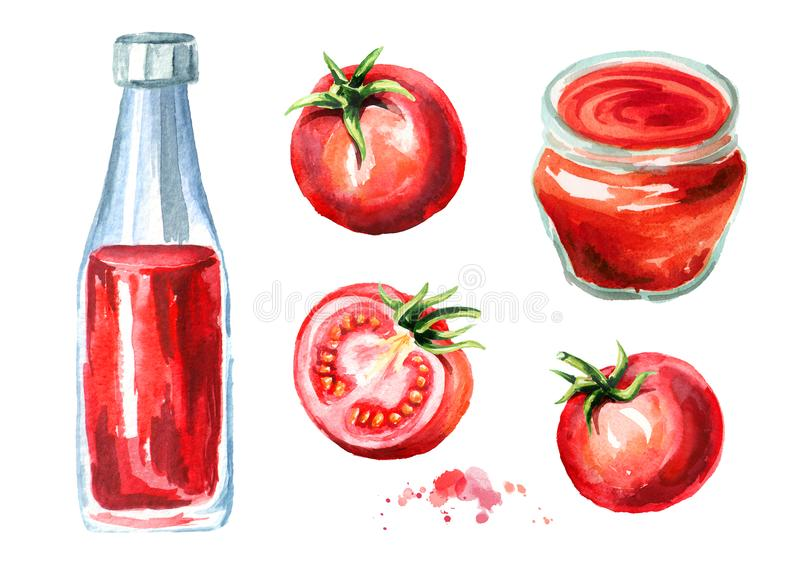Le ketchup et la sauce de tomate ont placé avec les tomates rouges mûres Illustration tirée par la main d'aquarelle, d'isolement  illustration stock