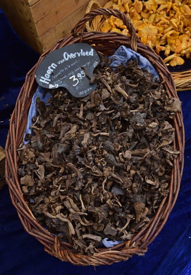 Le klaxon du champignon d'abondance s'est vendu dans un panier de rotin au marché de matin d'Amsterdam photographie stock