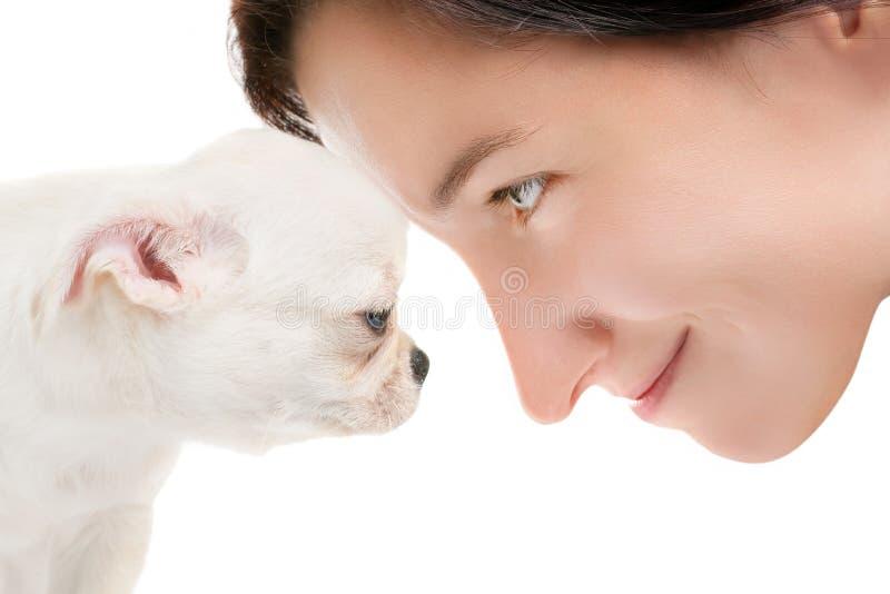 Le kvinnaframsidan - till - framsida med den lilla vita chihuahuavalpen royaltyfria foton