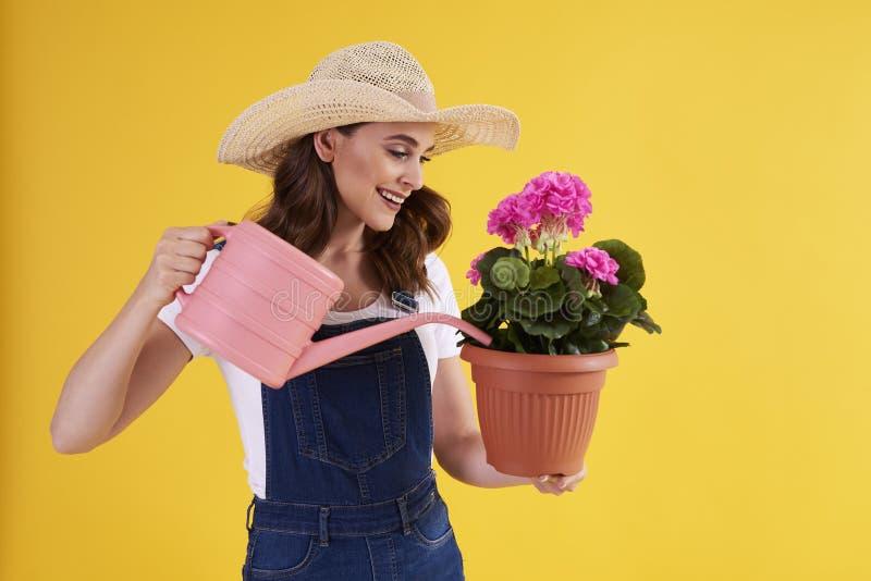 Le kvinnan som bevattnar blommor i blomkruka fotografering för bildbyråer