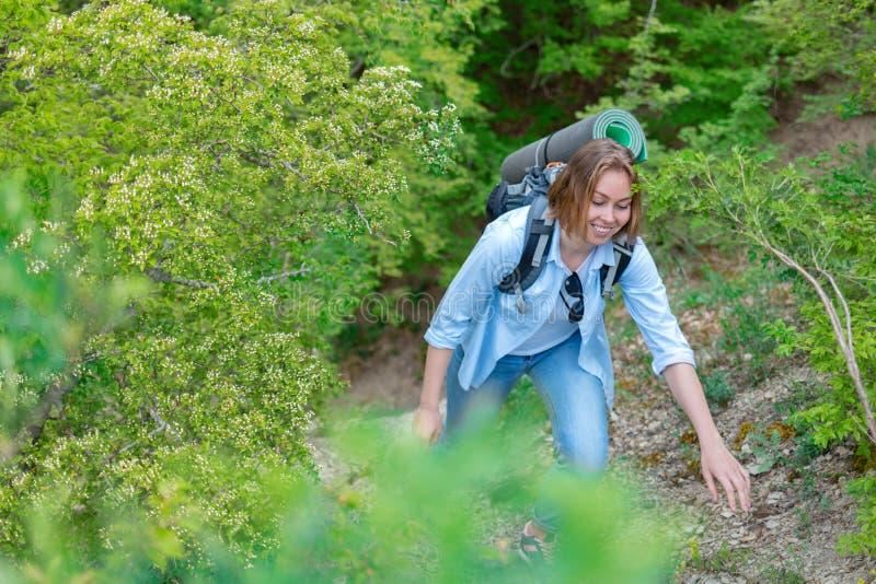 Le kvinnan som kl?ttrar p? en bergbana V?xter och tr?d i bakgrunden Aktiv sportar och turism ton arkivbild