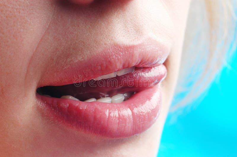 Le labbra della donna immagine stock