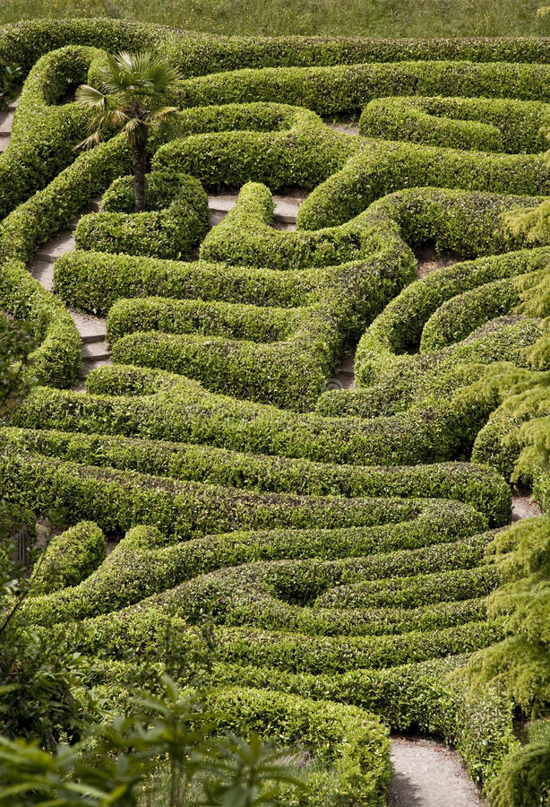 Le labyrinthe photo stock