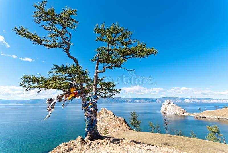 Le lac Baïkal photos stock