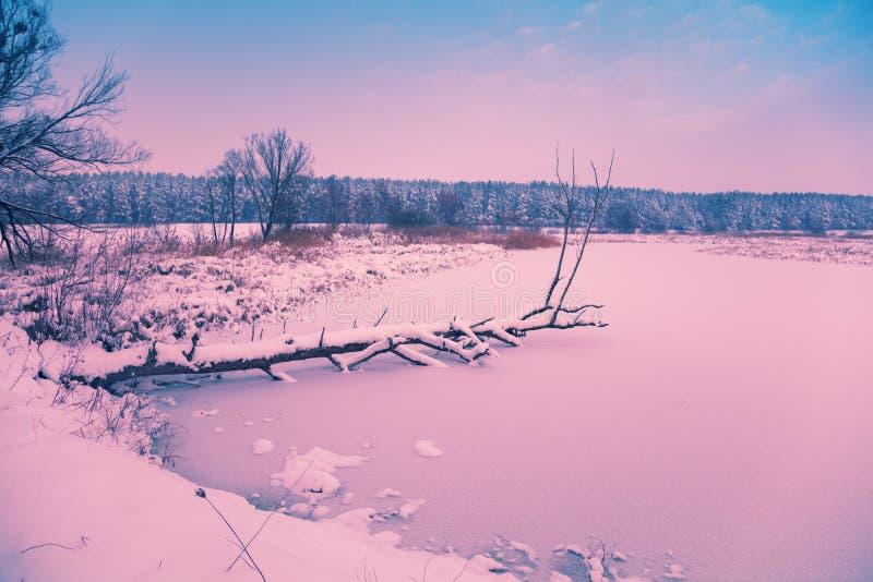 Le lac congelé à l'aube image stock