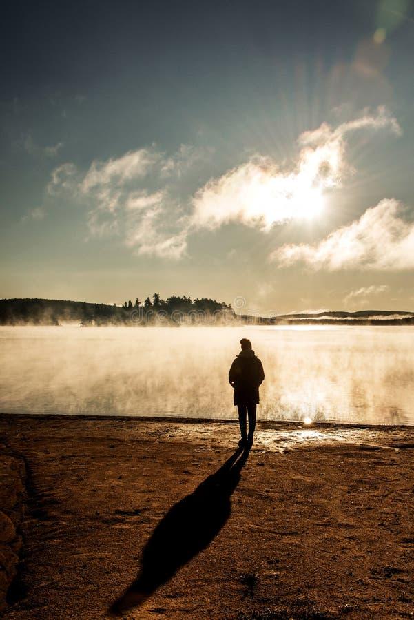 Le lac debout de belle femme de la brume de lever de soleil de regard de Canada de parc national d'algonquin de deux rivières dan image stock