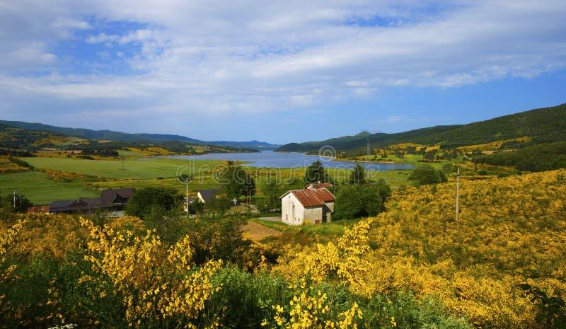 Le lac et les fleurs photographie stock libre de droits