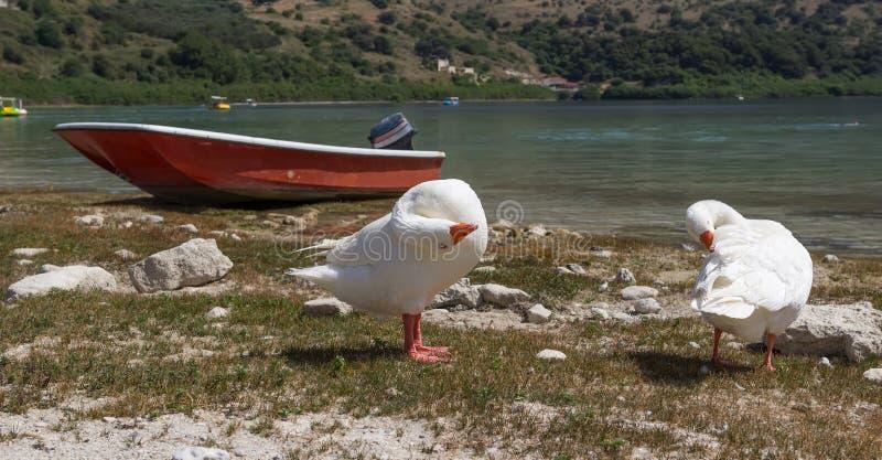 Le lac Kourna Crète image libre de droits