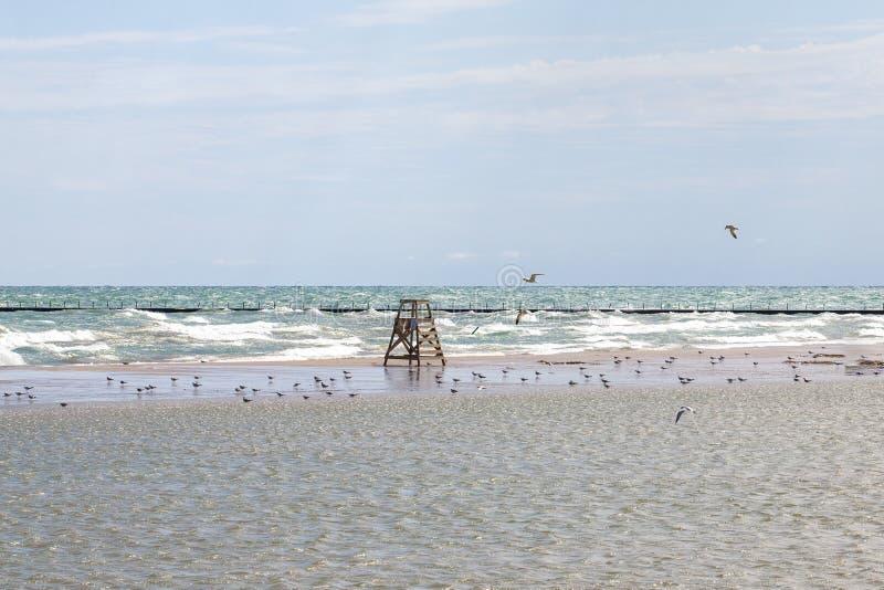 Le lac Michigan onduleux à une plage de Chicago images libres de droits