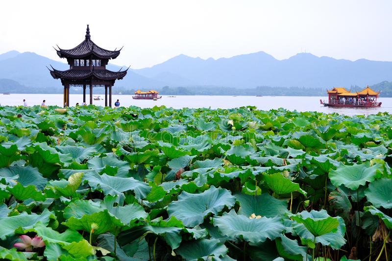Le lac occidental (hangzhou, porcelaine) photos libres de droits