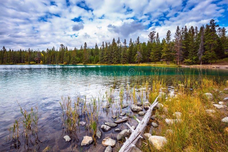 Le lac ovale avec de l'eau clair images libres de droits