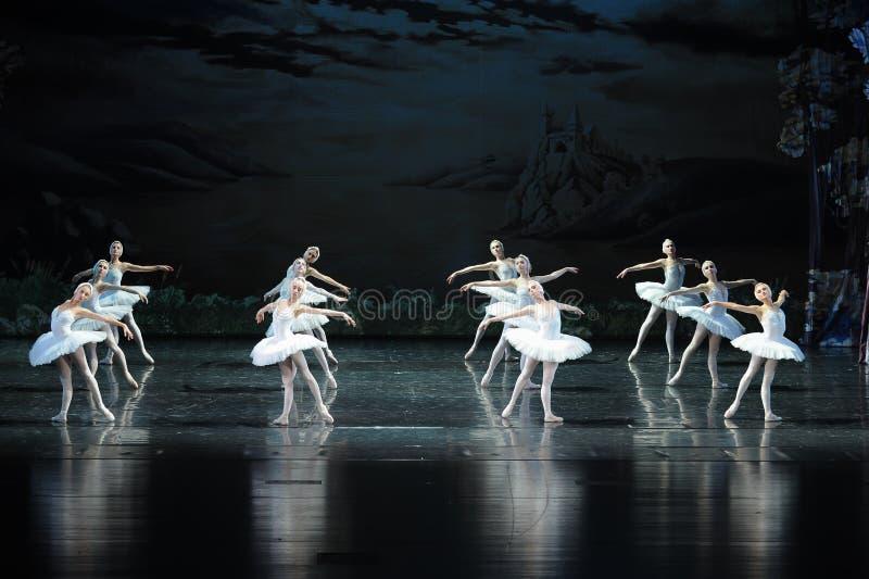 Le lac rangé swan d'équipe-ballet de cygne photo stock