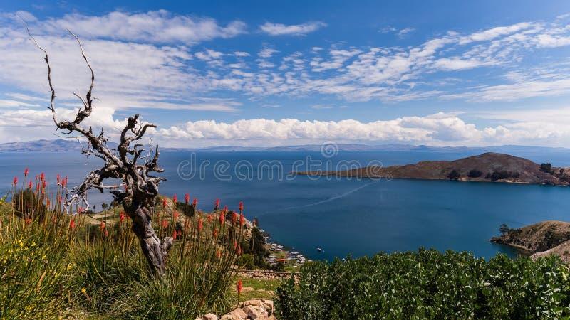 Le Lac Titicaca à la frontière de la Bolivie et du Pérou images stock