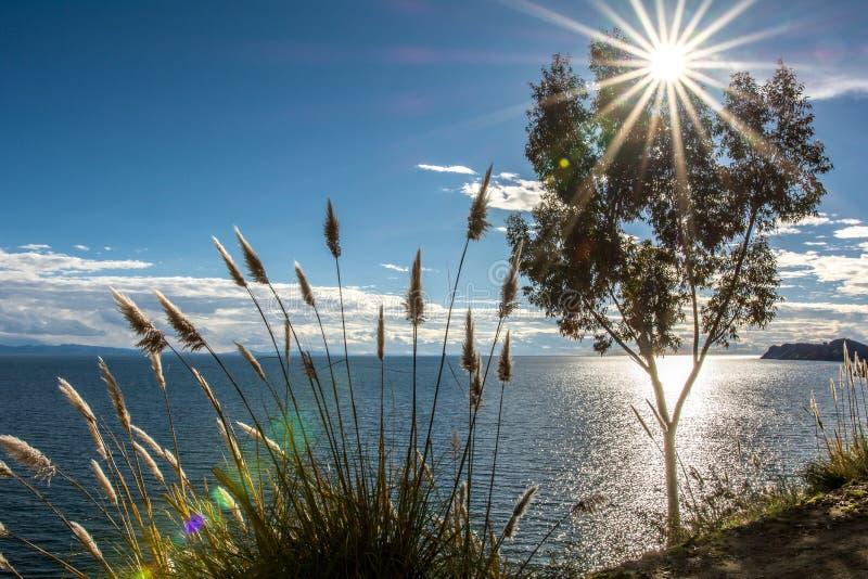 Le Lac Titicaca -1- photographie stock libre de droits