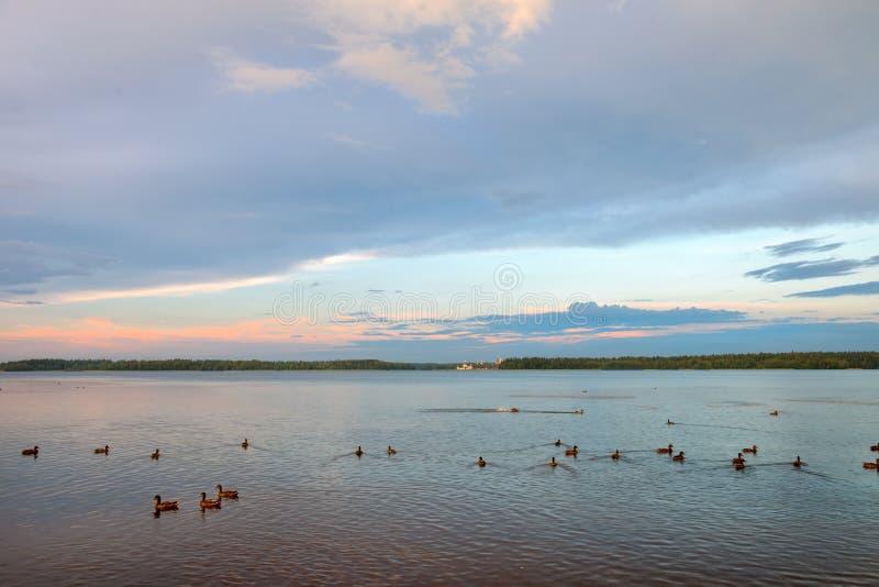 Le lac Valdai images libres de droits