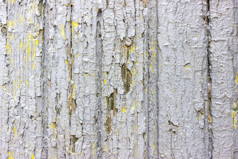 Le lait de chaux de vintage a peint vieux le fond texturisé par mur minable en bois rustique de planche Structure de panneau en b photographie stock