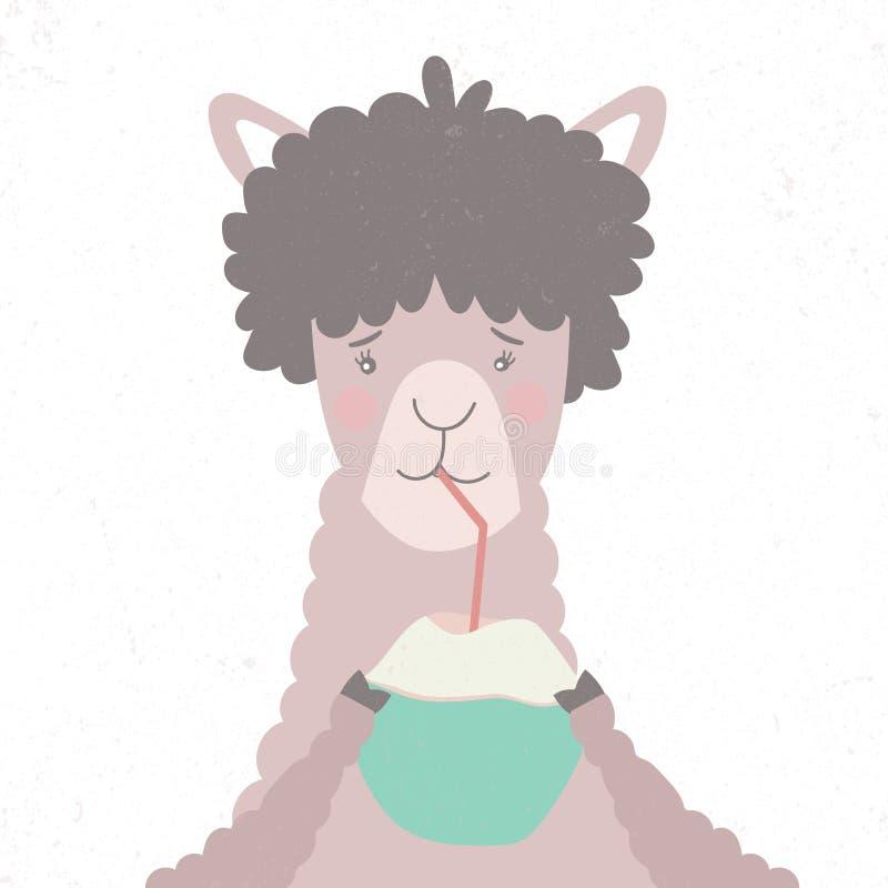 Le lama boit un cocktail avec la noix de coco illustration libre de droits