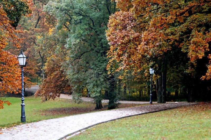 Le lampade e gli alberi di autunno in Maksimir parcheggiano, Zagabria, Croazia fotografie stock