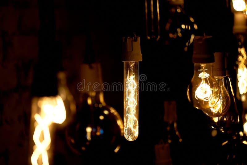 Le lampadine Erickson hanno sospeso con le cellule con l'uccello della decorazione Luce calda gialla della lampada fotografia stock