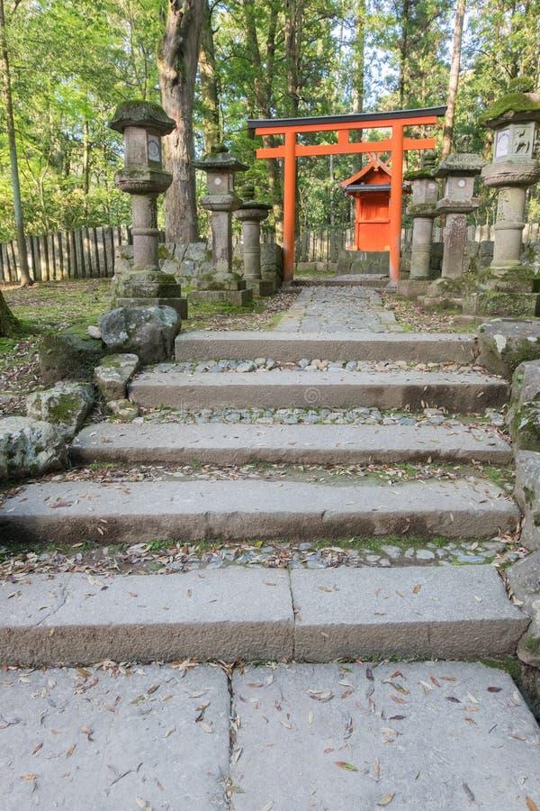 Le lanterne di pietra e un portone di Torii al Kasuga Taisha shrine nella N fotografia stock