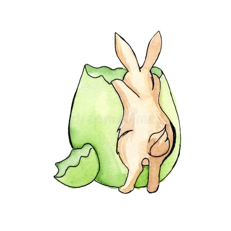 Le lapin de brun de Pâques jette un coup d'oeil dans une aquarelle verte d'oeufs illustration libre de droits