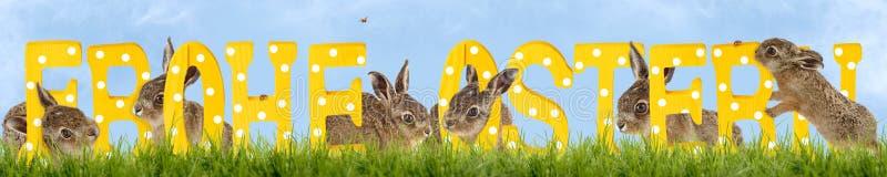 Le lapin de Pâques, souhaitent Joyeuses Pâques photographie stock