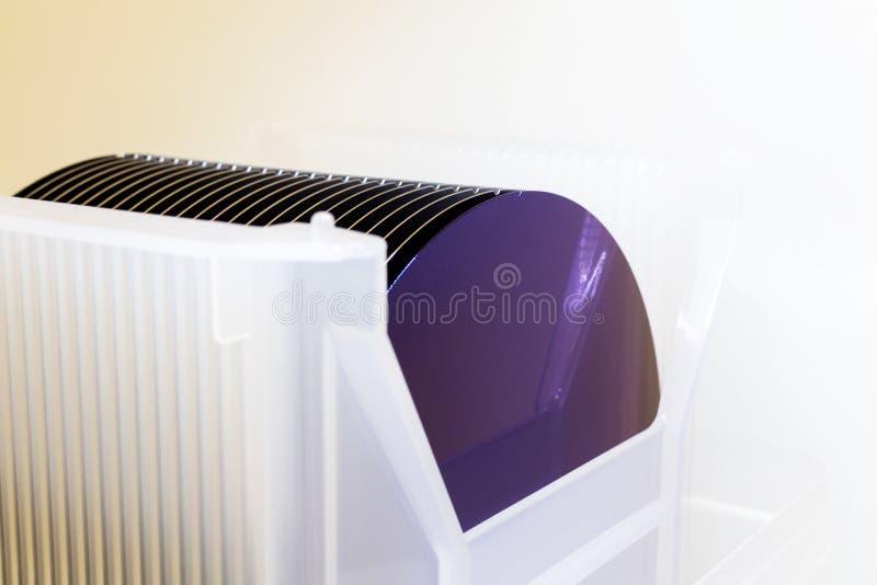 Le lastre di silicio in scatola di plastica bianca del supporto su un wafer della tavola A è una fetta sottile di materiale a sem fotografia stock libera da diritti