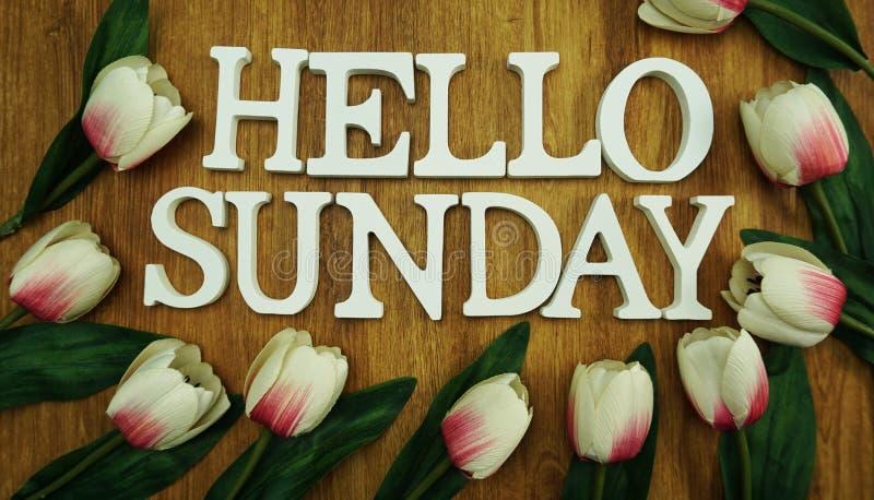 Le lettere felici dell'alfabeto di parola di domenica sulla vista di legno del piano d'appoggio con il tulipano fioriscono la dec royalty illustrazione gratis