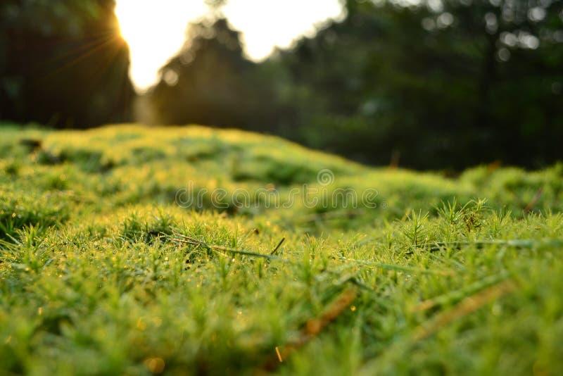 Le lever de soleil avec espoir images stock