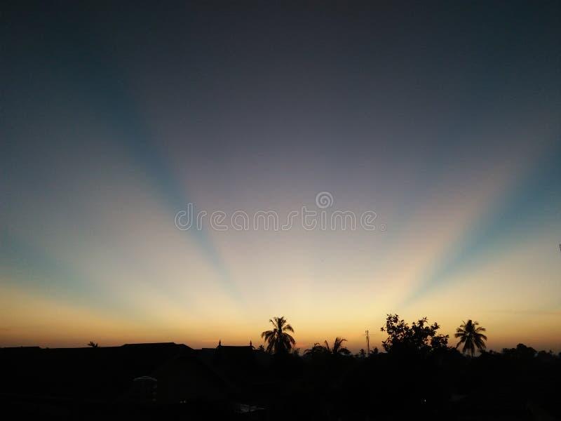 Le lever de soleil brille par les arbres et les buldings photo stock