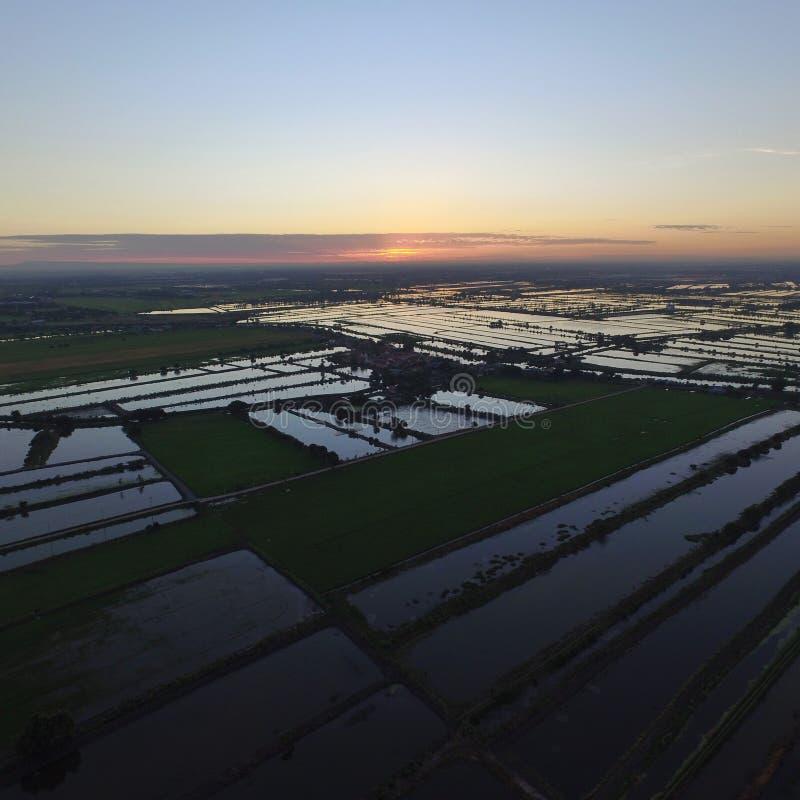 Le lever de soleil de l'agriculteur photo libre de droits